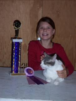 Cat Project Winner